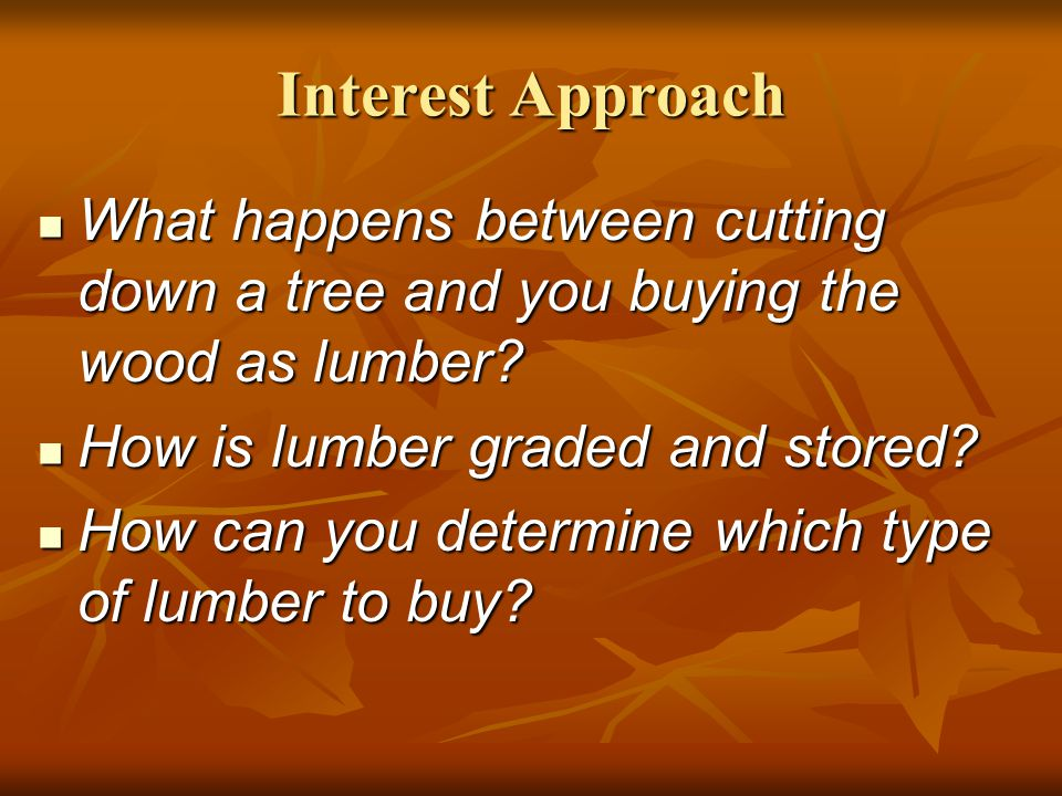 Interest Approach What happens between cutting down a tree and you buying the wood as lumber How is lumber graded and stored