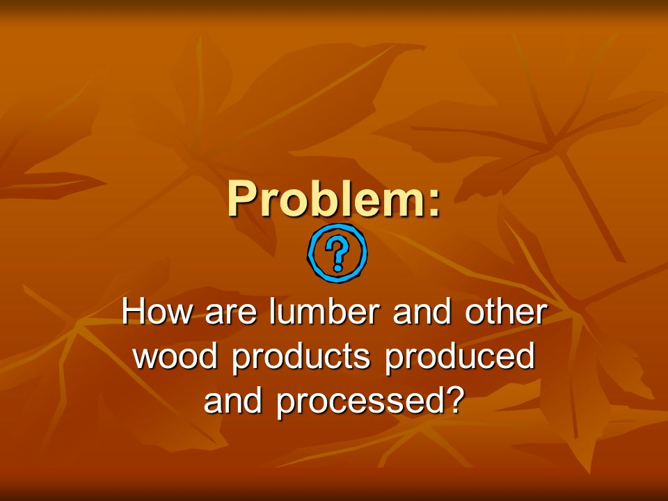 How are lumber and other wood products produced and processed