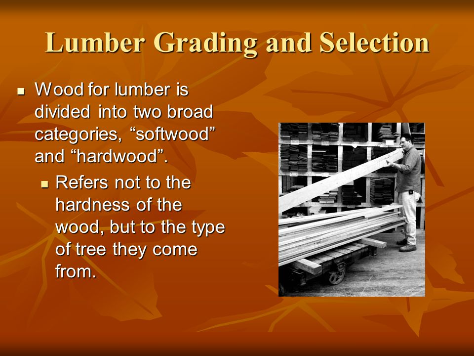 Softwood Lumber Grades ~ Lumber grading ppt download