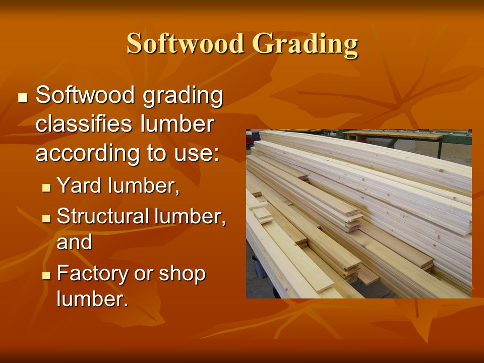 Softwood Lumber Grades ~ Lumber grading ppt download