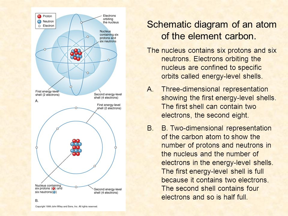 Schematic diagram of an atom of the element carbon.