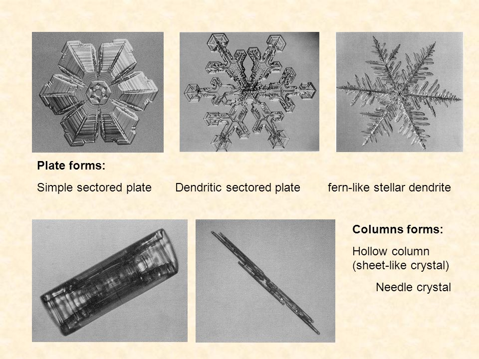 Plate forms: Simple sectored plate Dendritic sectored plate fern-like stellar dendrite.