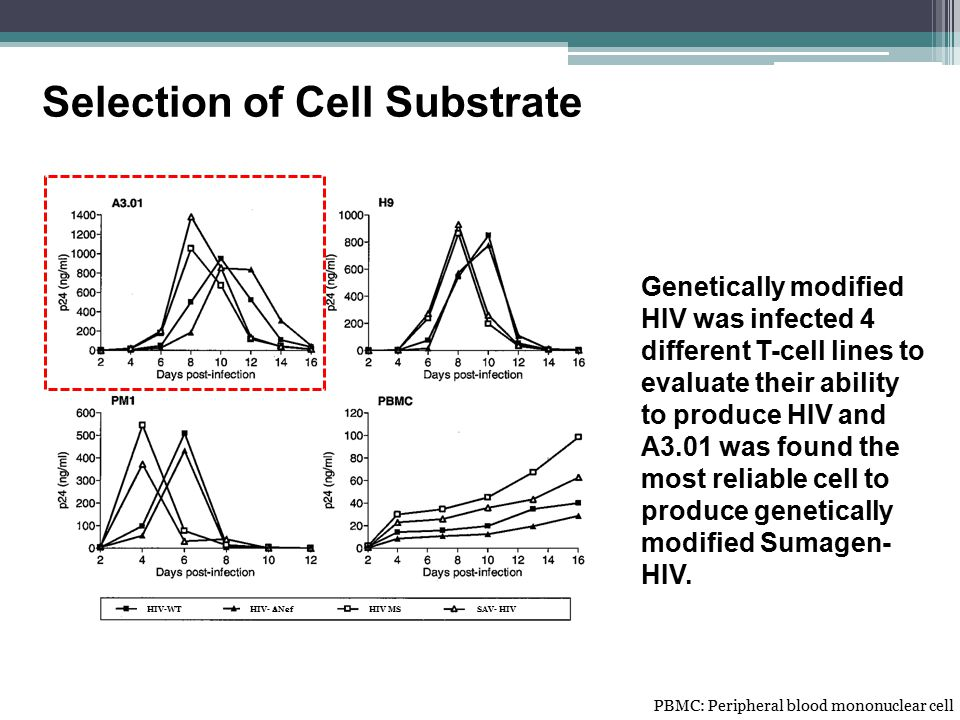 Selection of Cell Substrate