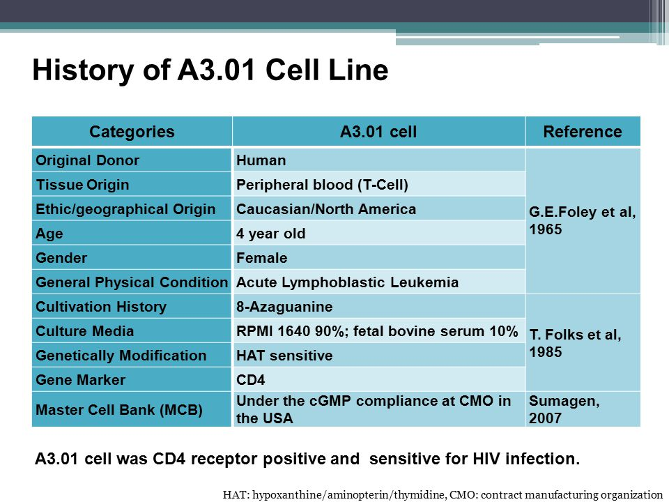 History of A3.01 Cell Line Categories A3.01 cell Reference