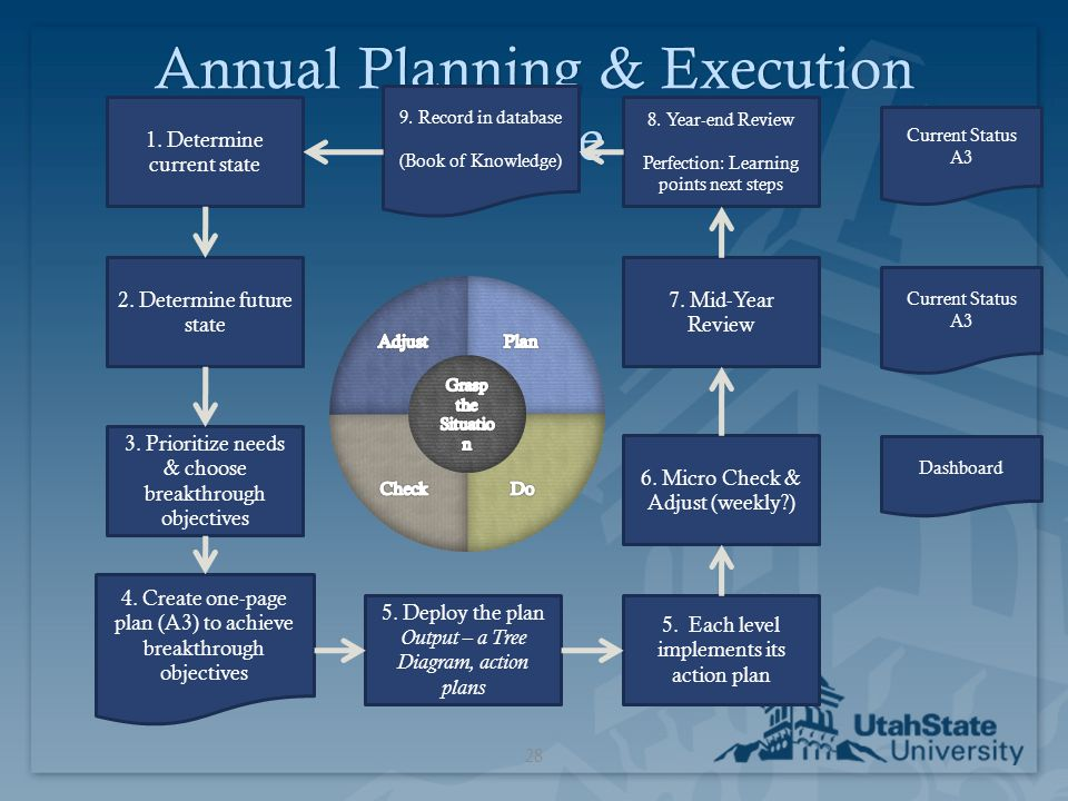 Annual Planning & Execution Cycle