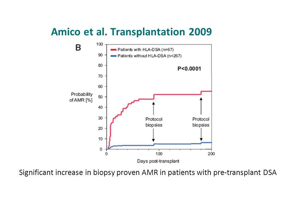 Amico et al. Transplantation 2009