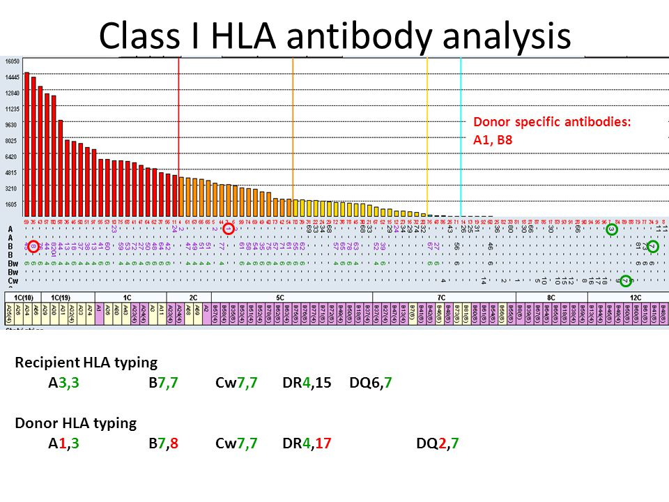 Class I HLA antibody analysis