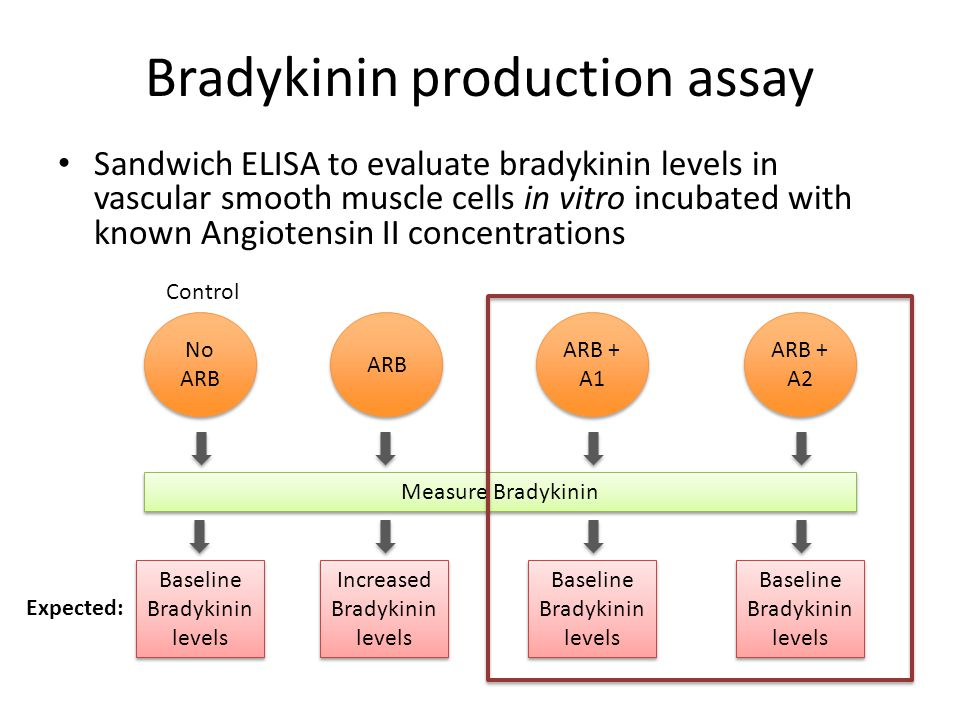 Bradykinin production assay