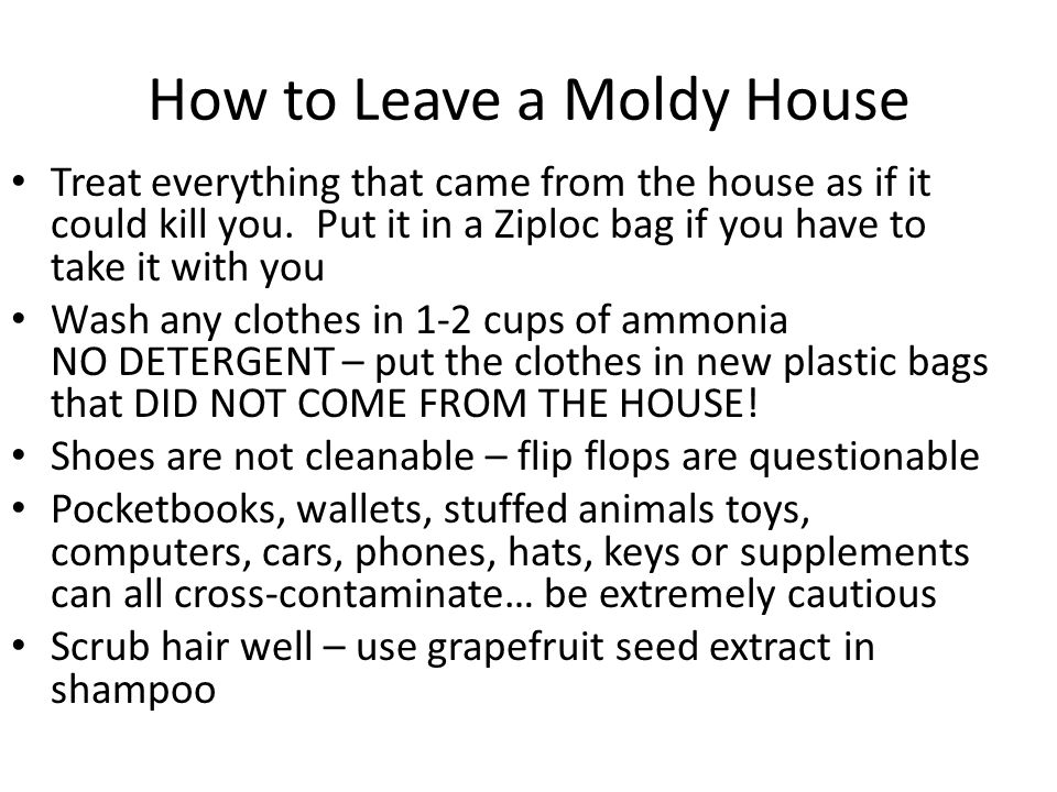 How to Leave a Moldy House