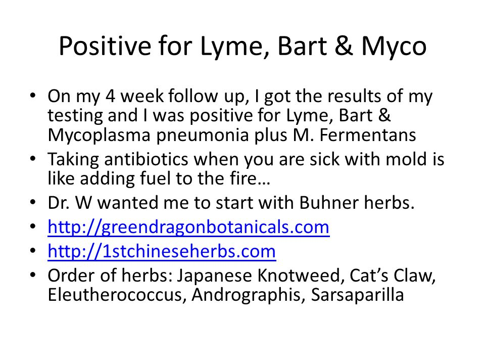 Positive for Lyme, Bart & Myco