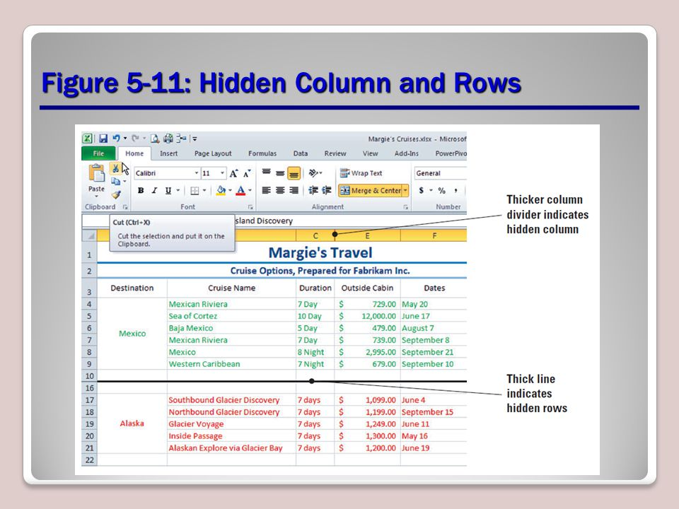Figure 5-11: Hidden Column and Rows