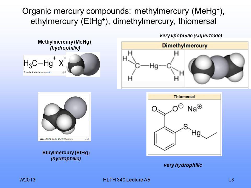 Methylmercury (MeHg) (hydrophilic) Ethylmercury (EtHg) (hydrophilic)