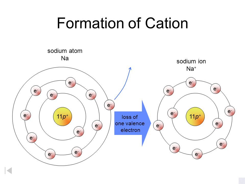 Formation of Cation sodium atom Na sodium ion Na+ 11p+ 11p+ e- e- e-