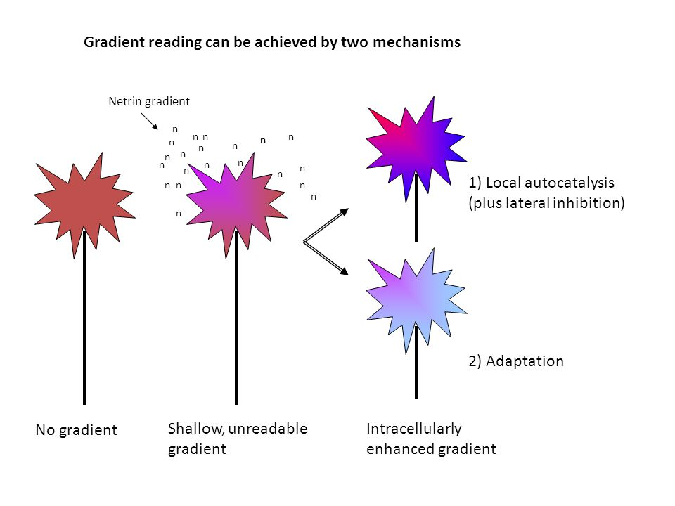 Gradient reading can be achieved by two mechanisms