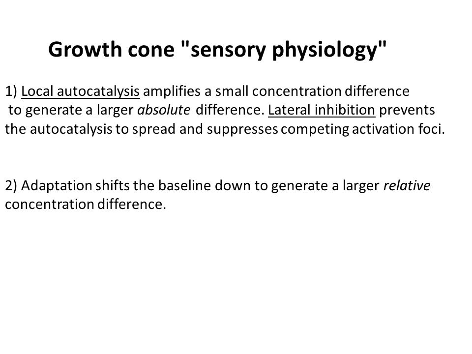 Growth cone sensory physiology