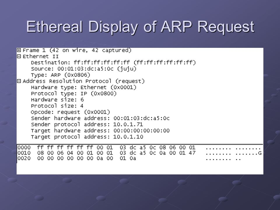 Ethereal Display of ARP Request
