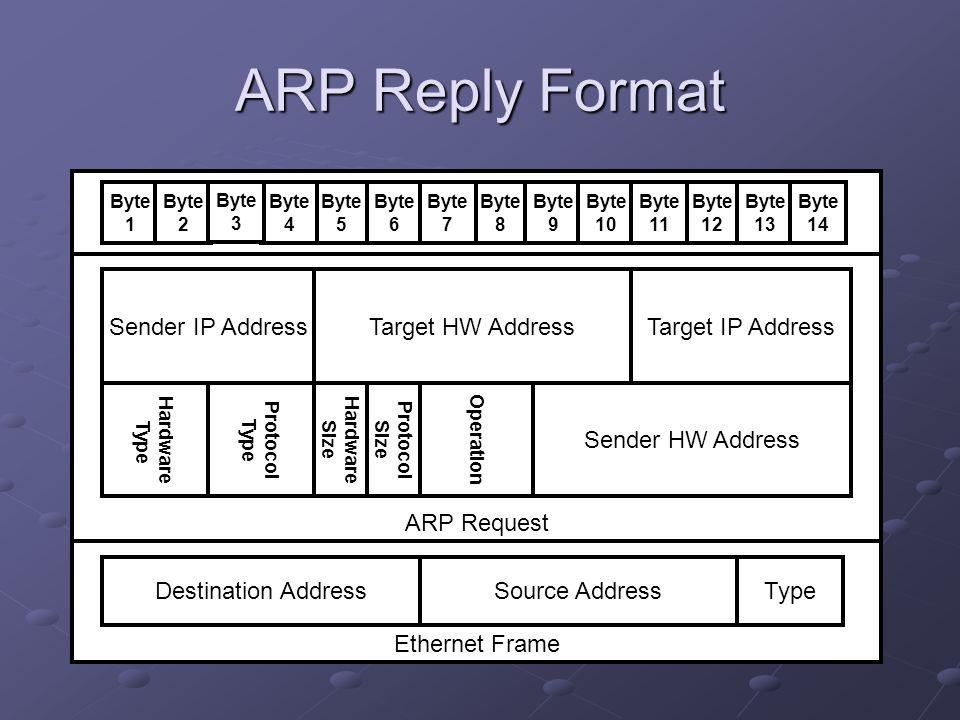 ARP Reply Format Ethernet Frame ARP Request Sender IP Address