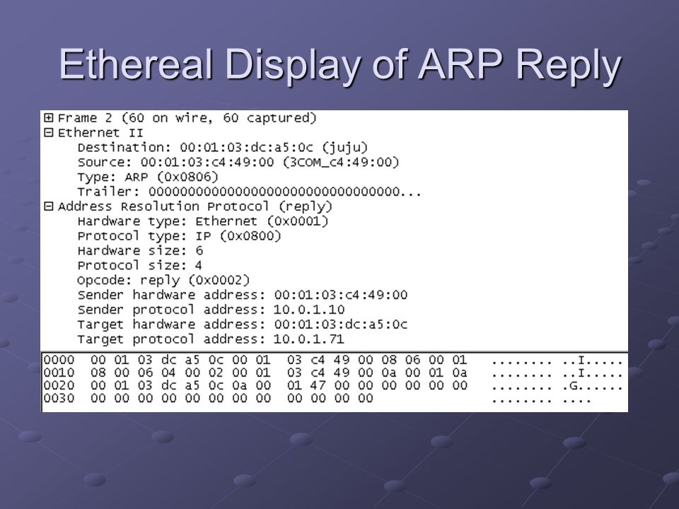 Ethereal Display of ARP Reply