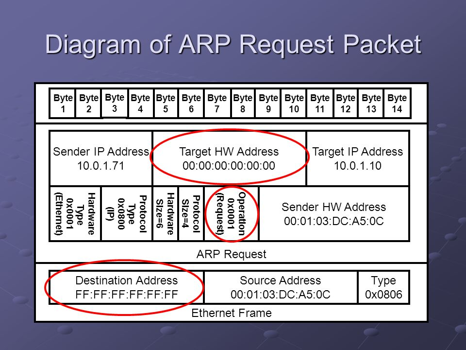 Diagram of ARP Request Packet