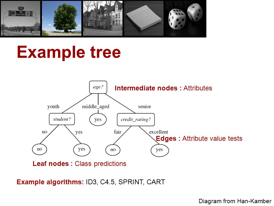 Example tree Intermediate nodes : Attributes