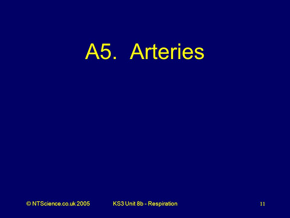 A5. Arteries KS3 Unit 8b - Respiration