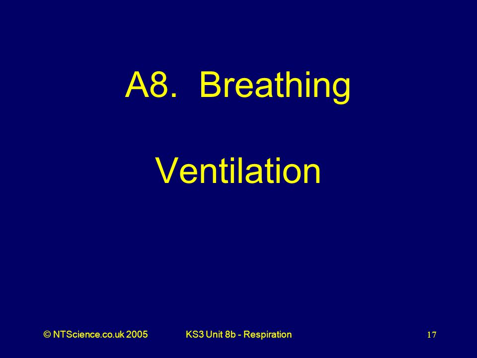 A8. Breathing Ventilation