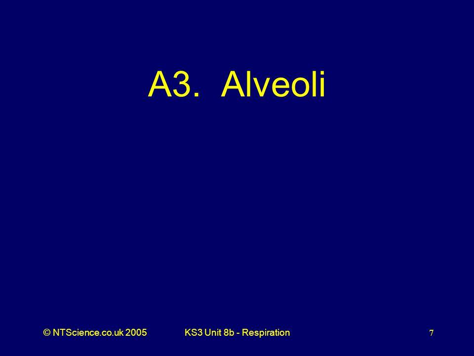 A3. Alveoli KS3 Unit 8b - Respiration