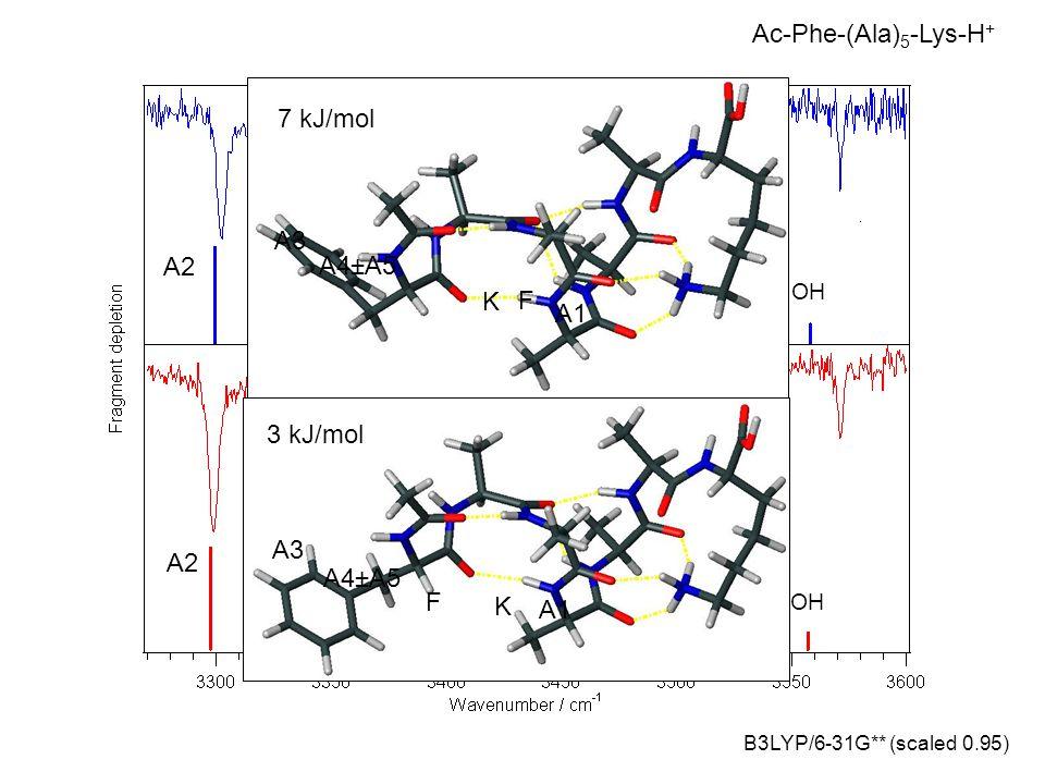 Ac-Phe-(Ala)5-Lys-H+ 7 kJ/mol A3 A2 A4±A5 K F A1 3 kJ/mol A3 A2 A4±A5