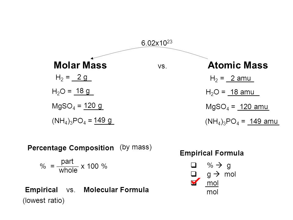Molar Mass vs. Atomic Mass