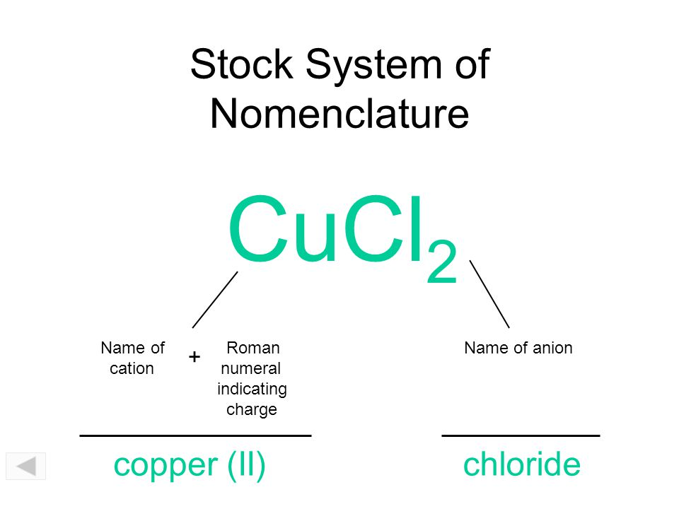 Stock System of Nomenclature