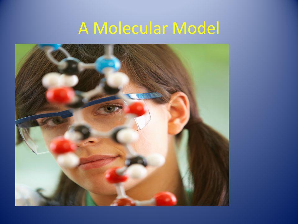 A Molecular Model