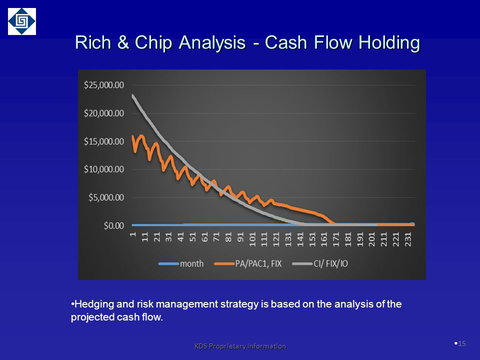 Rich & Chip Analysis - Cash Flow Holding
