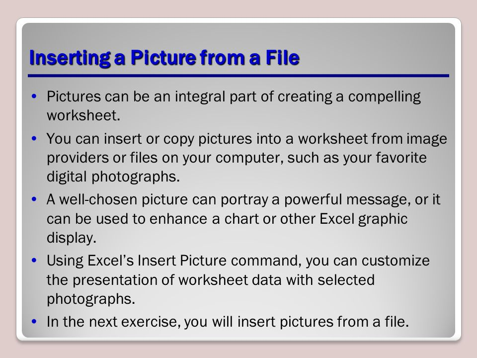 Inserting a Picture from a File