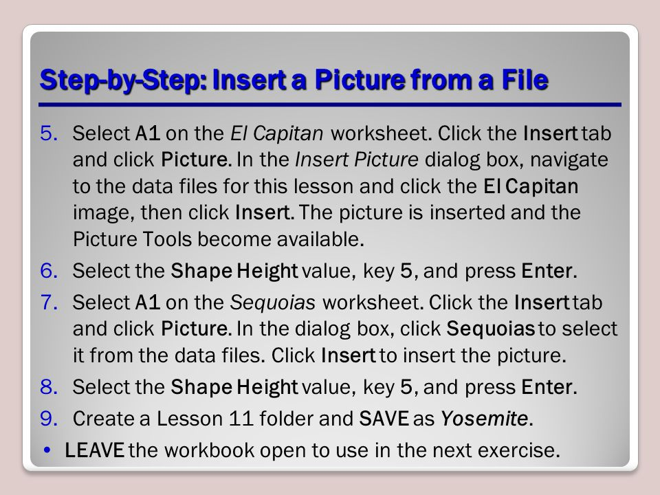Step-by-Step: Insert a Picture from a File