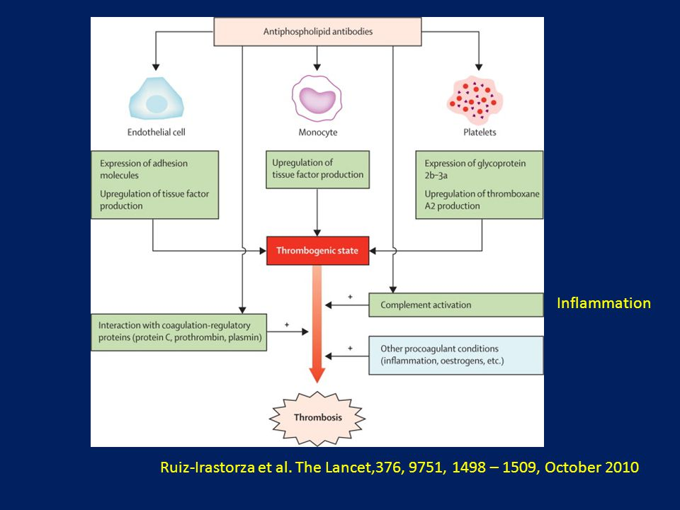 Inflammation Ruiz-Irastorza et al. The Lancet,376, 9751, 1498 – 1509, October 2010