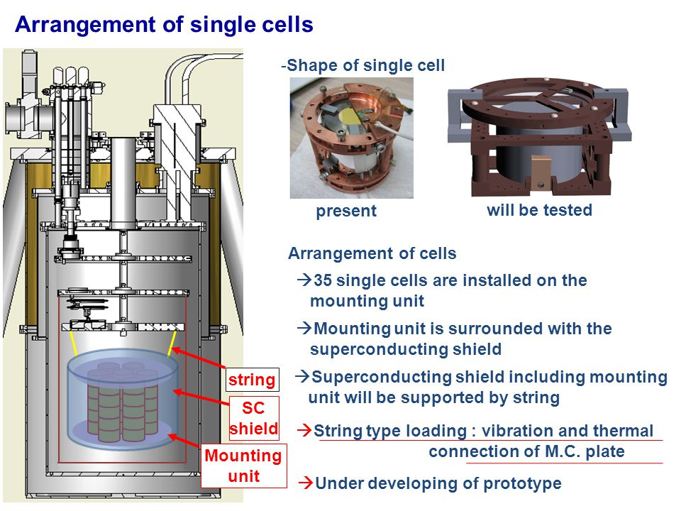 Arrangement of single cells