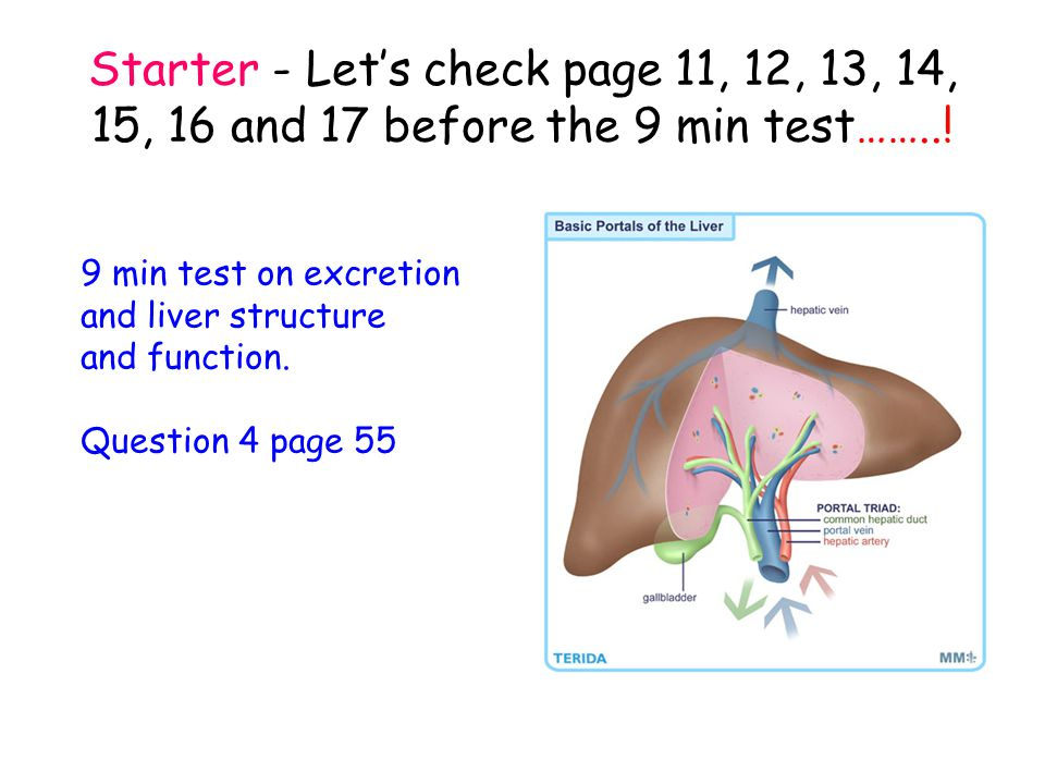 Starter - Let's check page 11, 12, 13, 14, 15, 16 and 17 before the 9 min test……..!