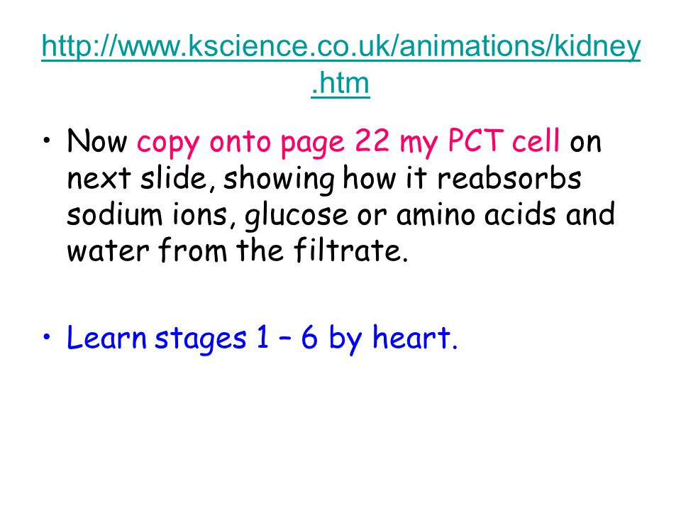 http://www.kscience.co.uk/animations/kidney.htm