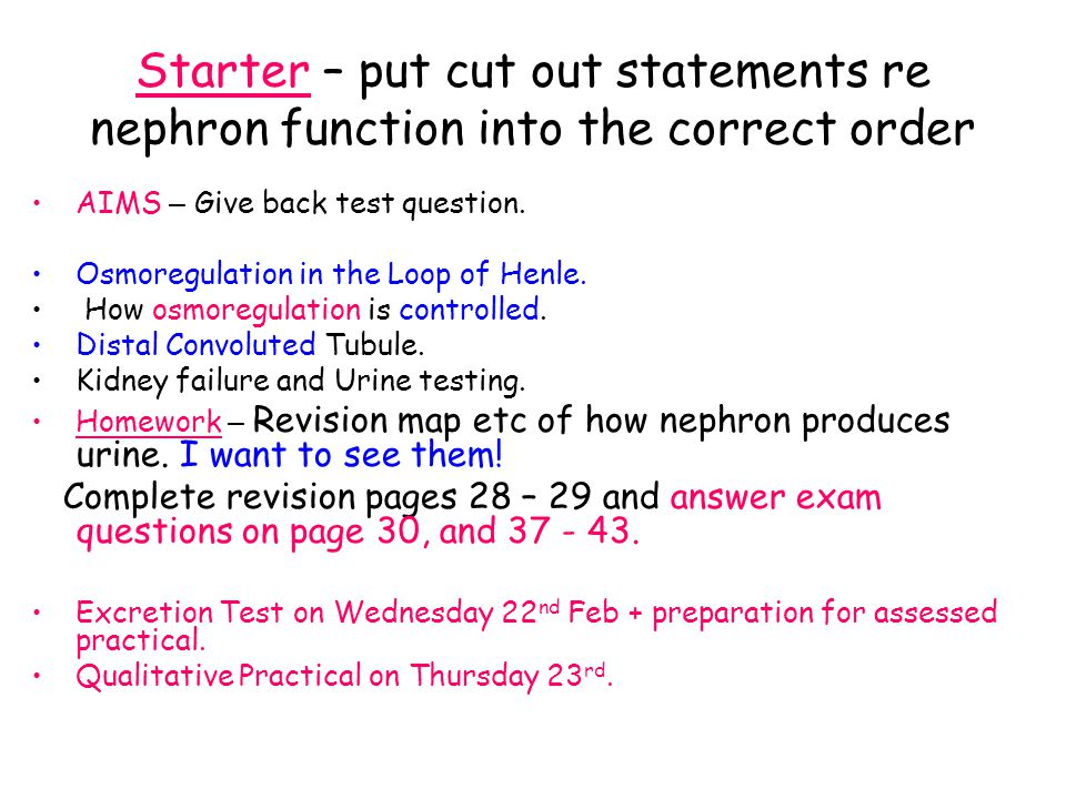 Starter – put cut out statements re nephron function into the correct order