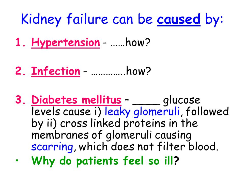 Kidney failure can be caused by:
