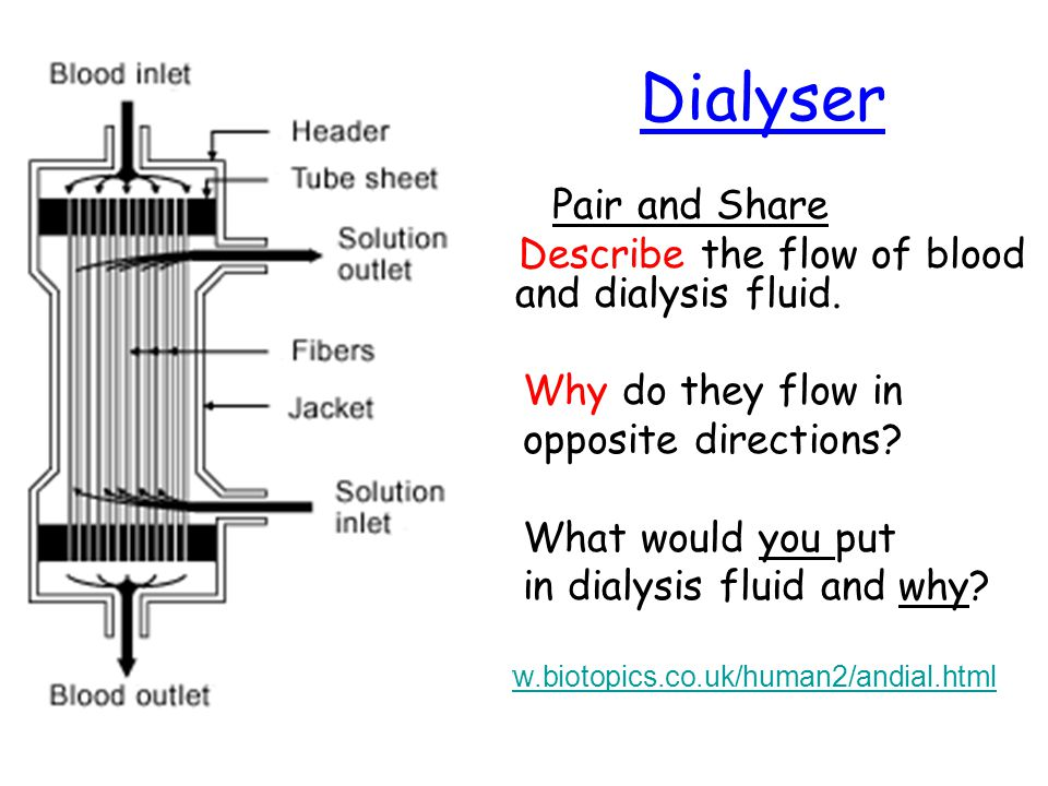 Dialyser Pair and Share