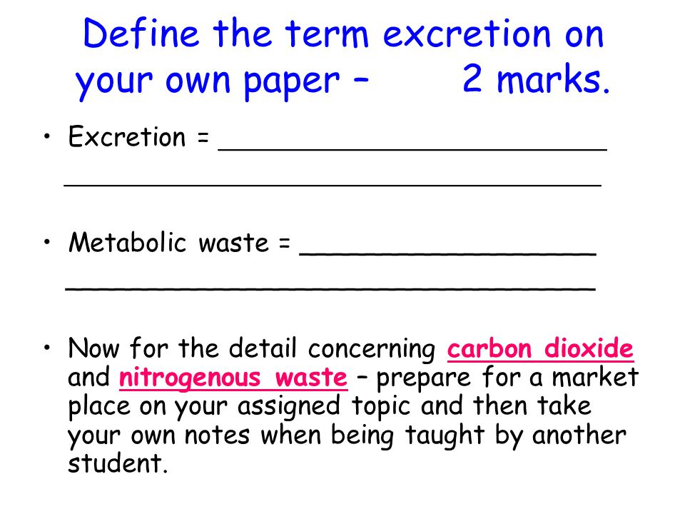 Define the term excretion on your own paper – 2 marks.