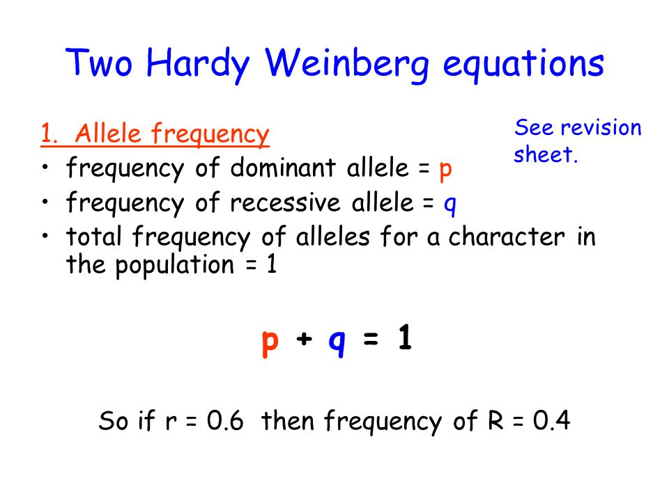 hardy weinberg sheet Homework 2: hardy-weinberg problems sec 28: due wednesday october 6, at the beginning of the lab sec 37: due friday october 8, at the beginning of the lab 1 what genetic factors must be occurring for a hardy-weinberg equilibrium to exist.