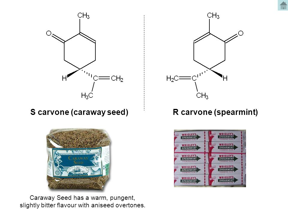 S carvone (caraway seed)