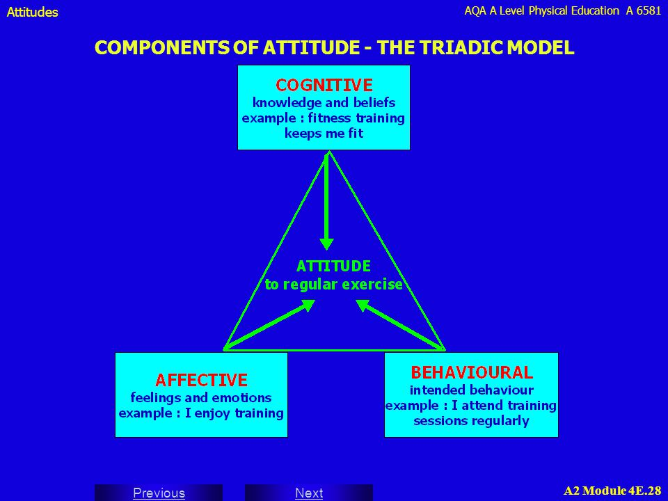 COMPONENTS OF ATTITUDE - THE TRIADIC MODEL