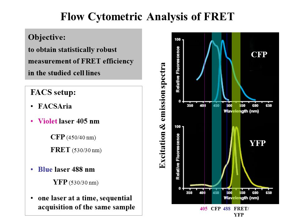 Flow Cytometric Analysis of FRET