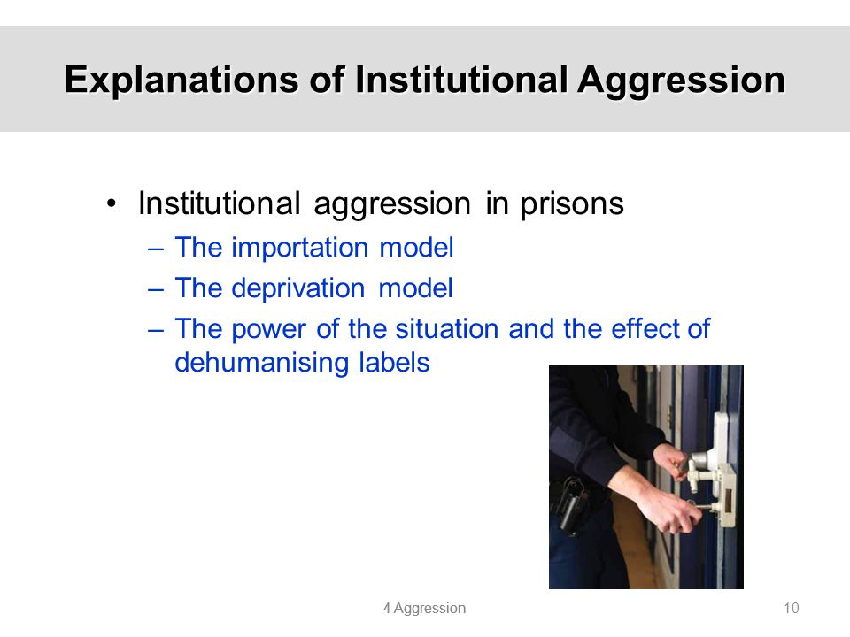 Explanations of Institutional Aggression