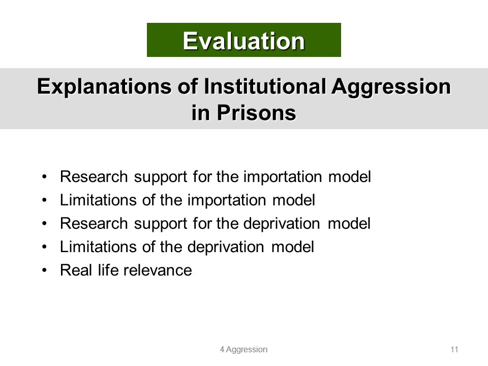 Explanations of Institutional Aggression in Prisons