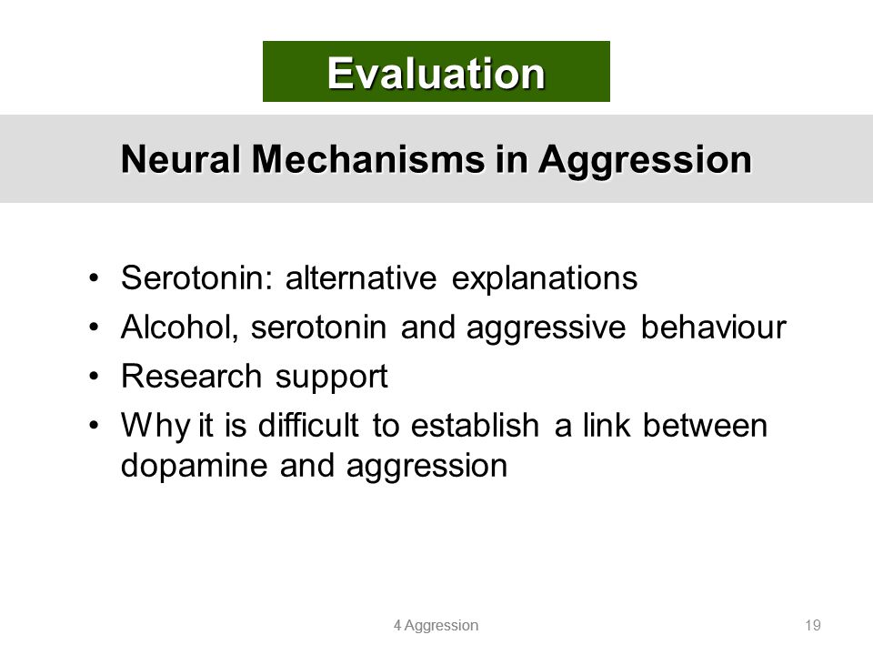 Neural Mechanisms in Aggression