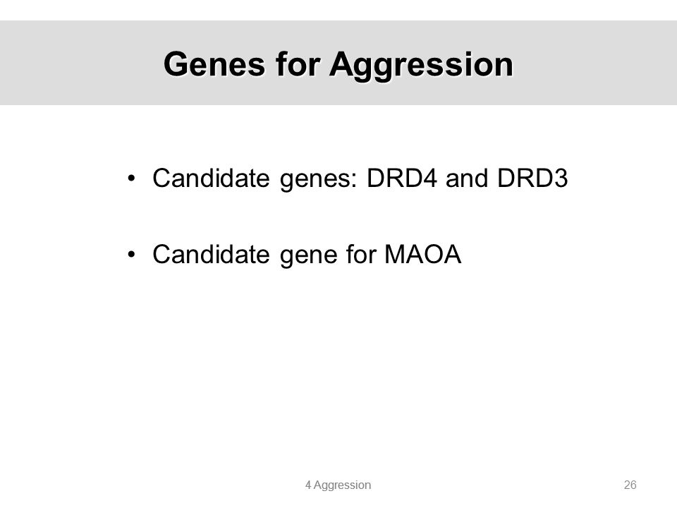Genes for Aggression Candidate genes: DRD4 and DRD3